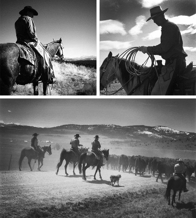 Montana Cowboys On Horseback at The Ranch At Rock Creek