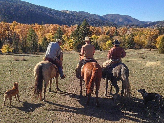 montana-cowboys