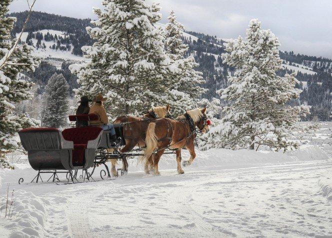 sleigh-ride