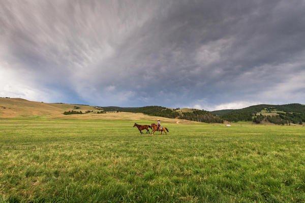 horseback-riding-trips