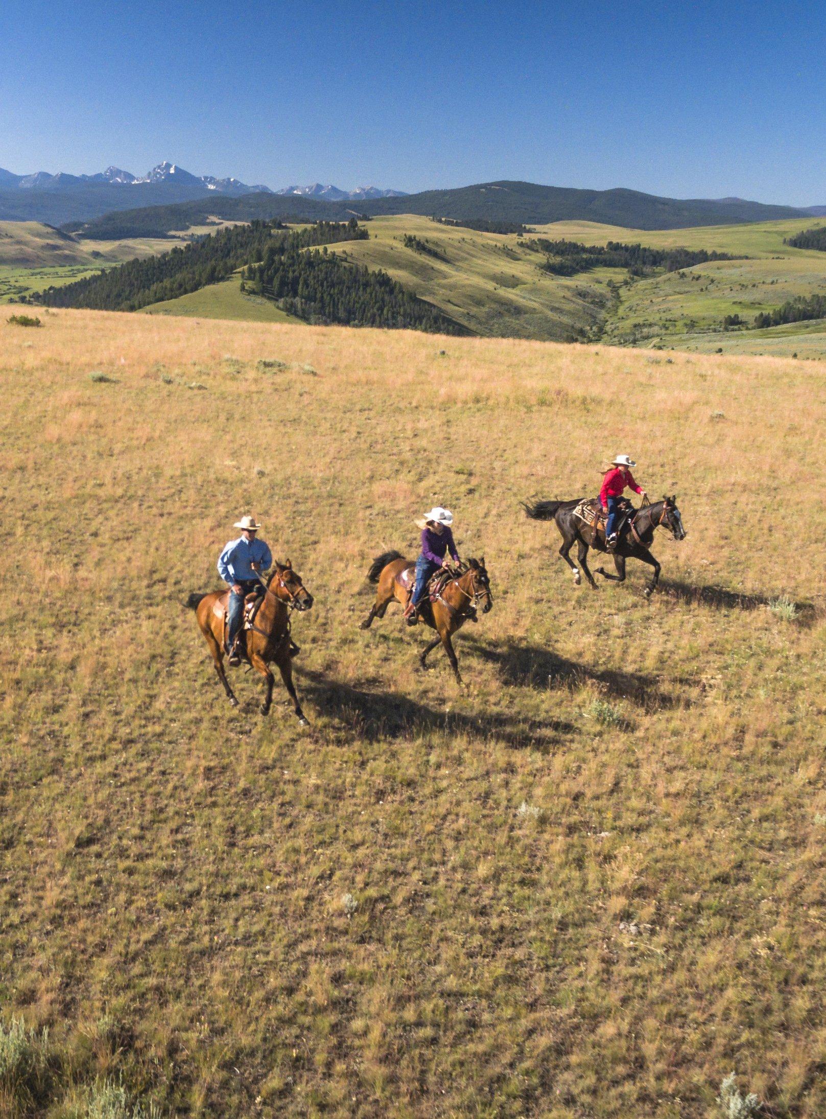 The Perfect Horseback Riding Vacation At Montana's 1st 5