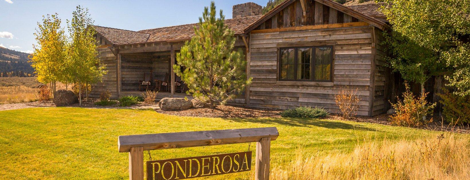 ponderosa-featured