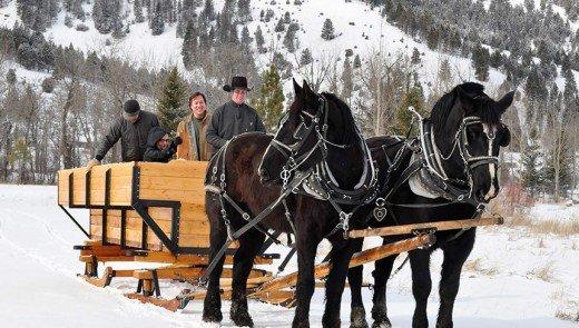 sleigh-rides-1