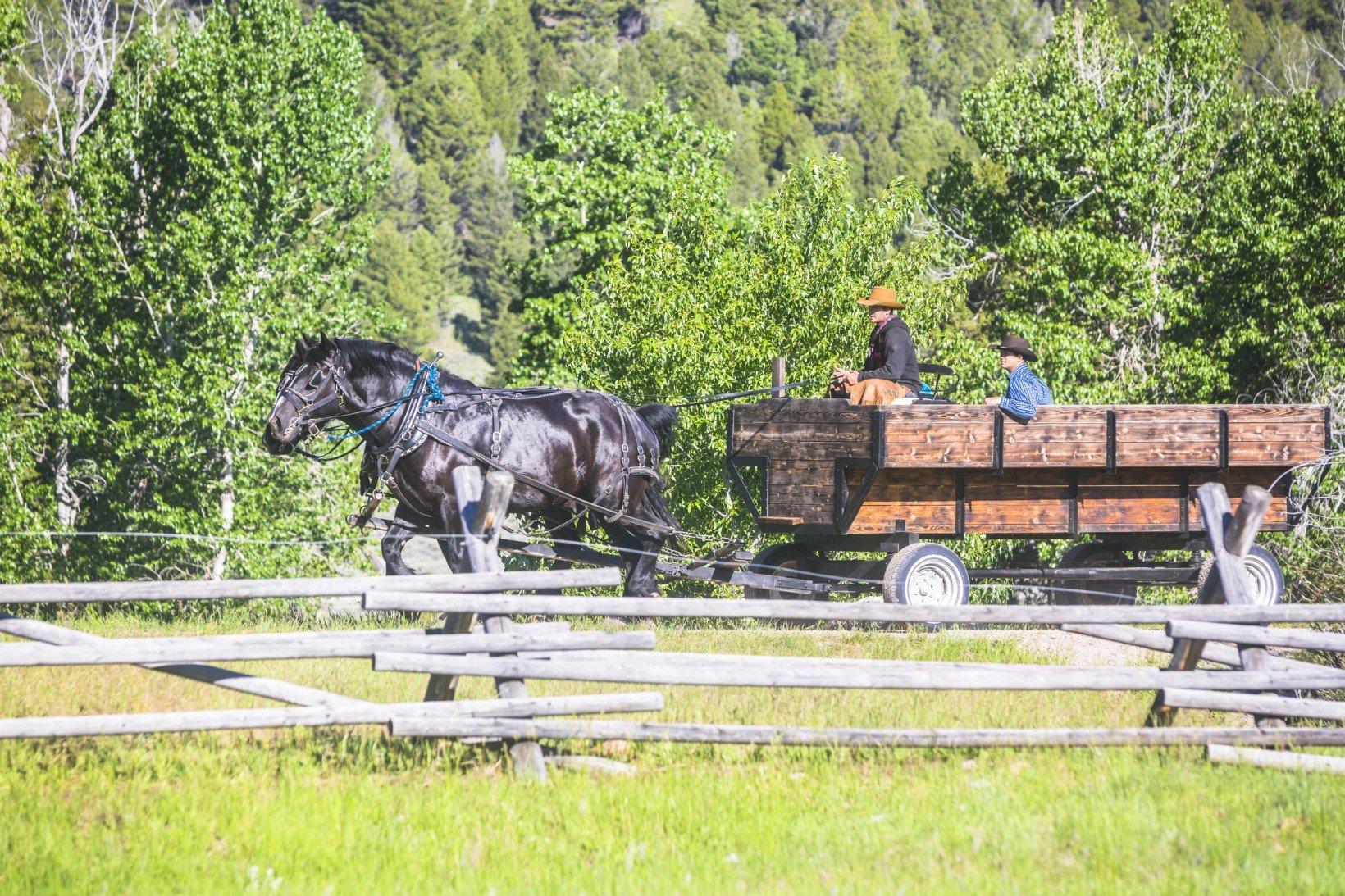 ranch-wagon-ride